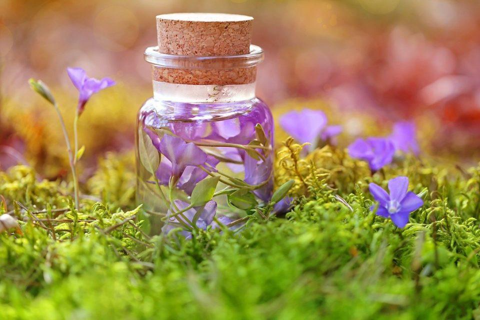 Elixir aux fleurs de Bach